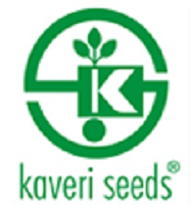 Kaveri Seed Company Limited BuyBack