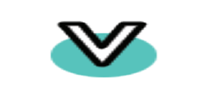 Vinny Overseas Limited IPO